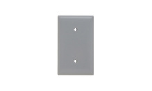 Blank Plates -- Strap Mounted, One Gang, Gray