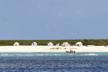 Field camps on Laysan Island.