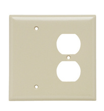 Combination Openings, 1 Blank & 1 Duplex Receptacle, Two Gang, Ivory