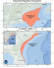 This is a map showing North Atlantic right whale critical habitat for the Greater Atlantic and and Southeast Regions.