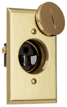 Tamper-Resistant Display Receptacle 15A/125V W/Brass Plate