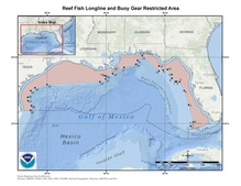 This is a map of reef fish longline and buoy gear restricted area in the Gulf of Mexico.