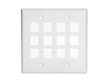 2-Gang, 12-Port Wall Plate, Ivory