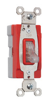PlugTail® Specification Grade Illuminated 15 amp Toggle Switch, Clear