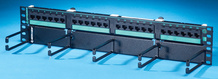 Clarity 5E hinged 24-port panel with lower cable management panel - Cat5e - six-port modules - 19 in x 3.5 in