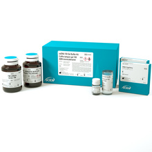 ssDNA 100-R Kit product photo