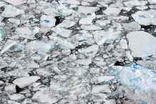 In recent years, July through September has been considered ice-free months in the Beaufort and Chukchi sea ASAMM study areas.