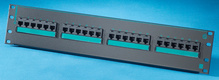 Clarity 5E 24-port panel - Cat5e - six-port modules - 19 in x 3.5 in