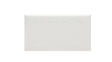 Blank Plates -- Strap Mounted, Four Gang, White