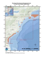 This is a map of North Atlantic right whale seasonal management areas in the Greater Atlantic and and Southeast Regions.