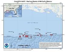 This is a map of reef and banks essential fish habitat, habitat area of particular concern in the Gulf of Mexico.