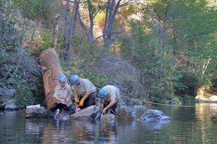 NOAA/CCC Veterans Corps collects data on the Eel River.