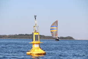 Chesapeake Bay buoy with sailboat in the background.