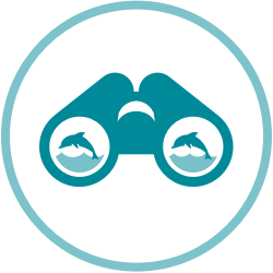 Viewing Marine Life Icon