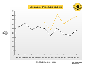 Image credit: Bee Informed Partnership/University of Maryland (Click image to download hi-res version.)