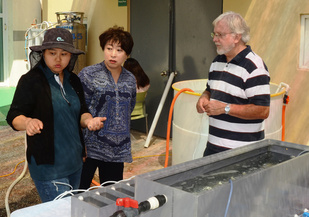 Korean scientists with Milford's Gary Wikfors.