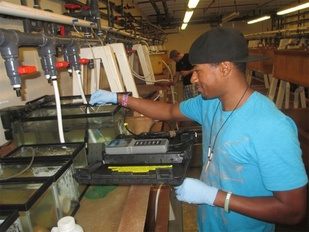 PEP student working in lab