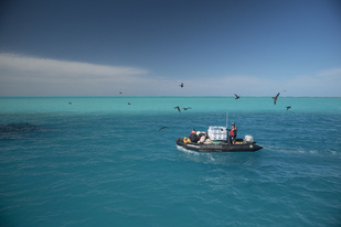 Small boat transports marine debris (Photo: NOAA Fisheries/Steven Gnam)