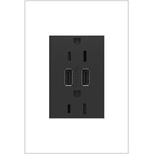 15A DUPLEX OUTLET W/DUAL USB GR