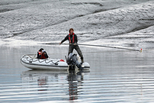 Acoustic Studies, tagging a beluga whale in Cook Inlet