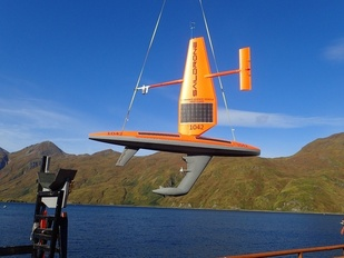 A saildrone with acoustic receiver is launched.