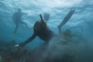 Kristen Kelly clears derelict fishing net from the reef at Pearl and Hermes Atoll