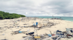 Marine debris along the shoreline in the Northwestern Hawaiian Islands