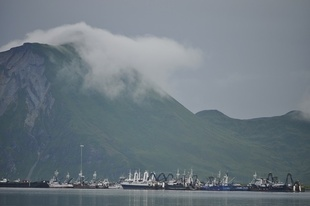 Commercial fishing vessels in the port of Dutch Harbor, Alaska
