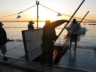 Two personnel are seen tending to a bait-barge, which is used to provide live bait for California's recreational fisheries.