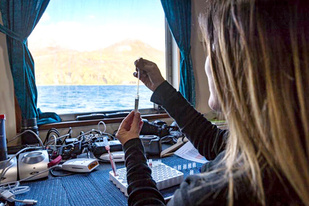 Studying At Risk Harbor Seals in Western Aleutians 5, photo by Josh London