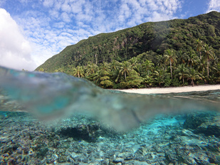 The reef at Ofu Island in American Samoa as a wave crests over the corals.