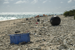 Marine debris along the shore at Midway Atoll