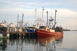 Fishing boats in Point Judith, Rhode Island