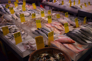 Fish on ice at a seafood market.