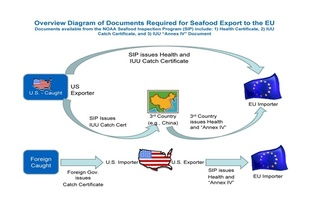 diagram-docs-required-for-seafood-export-to-EU.jpg