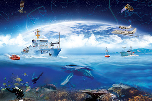 Collage of different graphics that represent what NOAA does.