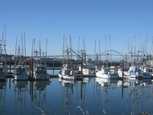 Fishing vessels in Newport, Oregon. Photo: NOAA Fisheries