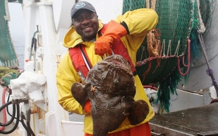 man holding large monkfish