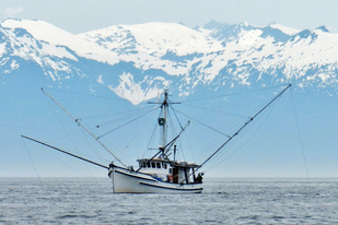 Fishing boat in Chatham Strait, Alaska. Credit: NOAA Teacher at Sea '13 Robert Ulmer.