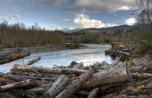 Elwha River photo credit john mcmillan nwfsc.jpg