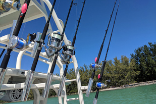 Reels and rods.