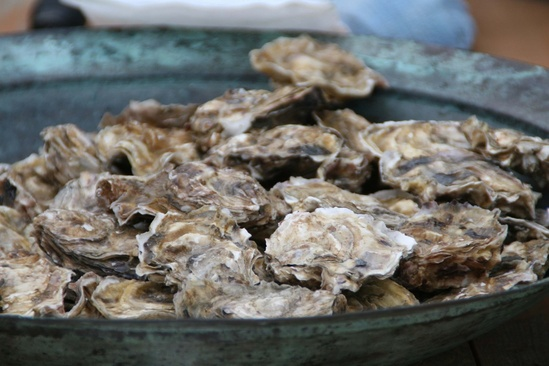 3054x2036-bowl-of-kachemak-bay-oysters-AKRO.jpg