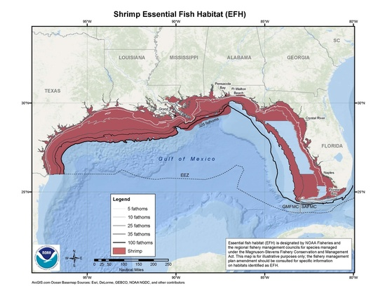 map-shrimp-EFH-GoMex-SERO.jpg