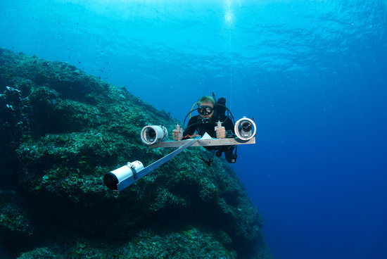 Scuba diver uses stereo-video technology to survey fish underwater.