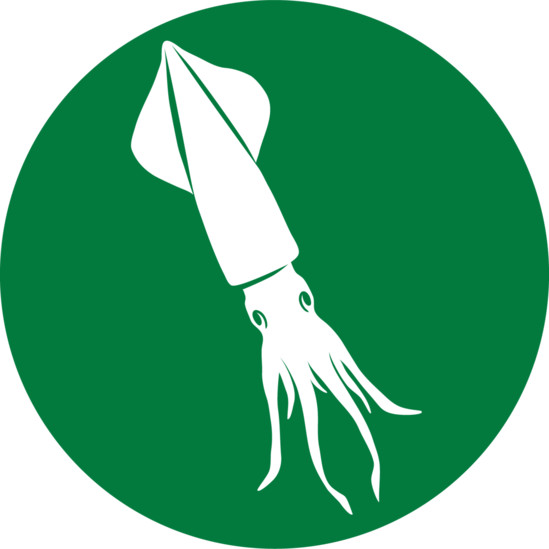 small icon of longfin inshore squid for documenting species