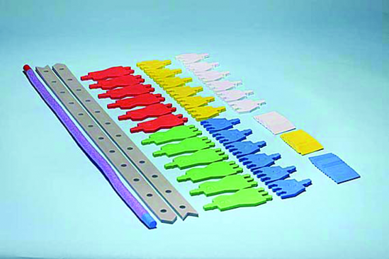 Genetics Modeling Kit