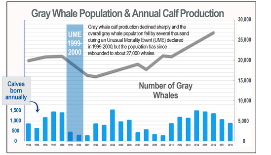 Annual calf production estimates for the eastern North Pacific gray whale population from 1994 to 2018. This graph also shows the results of our population abundance assessment.