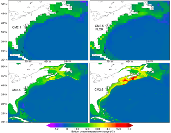 Ocean temperature in the U.S. Northeast shelf is projected to warm faster than the global average.