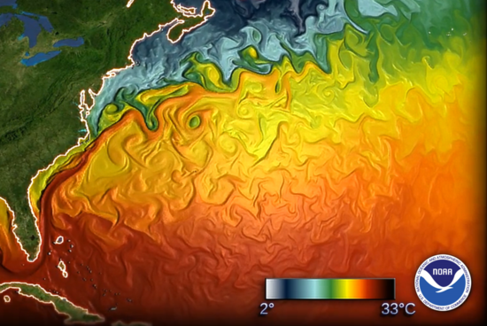 Simulated sea surface temperature for November for the east coast of the United States showing the warmer temperatures to the south, colder temperatures to the north, separated by the Gulf Stream..