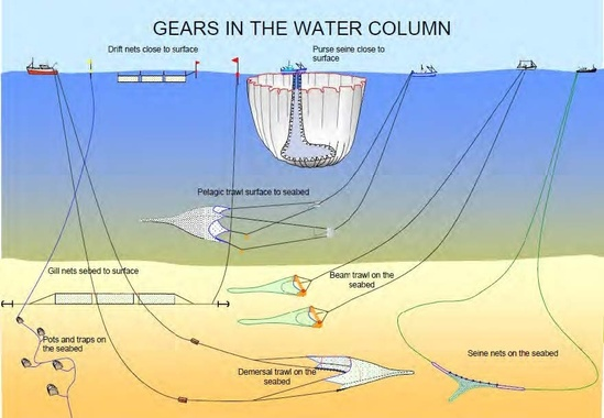 Fishing gears in water column